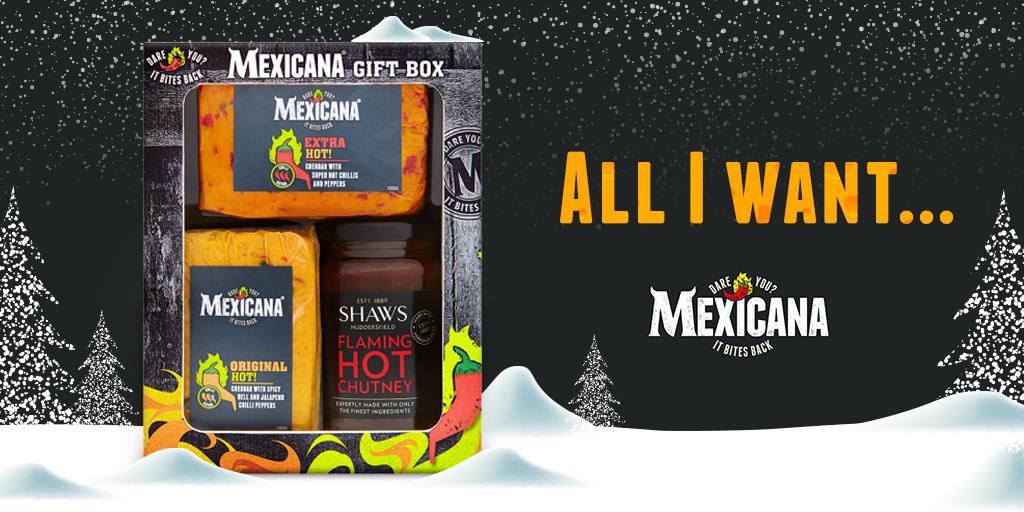 Mexicana Twitter - All i want.jpg