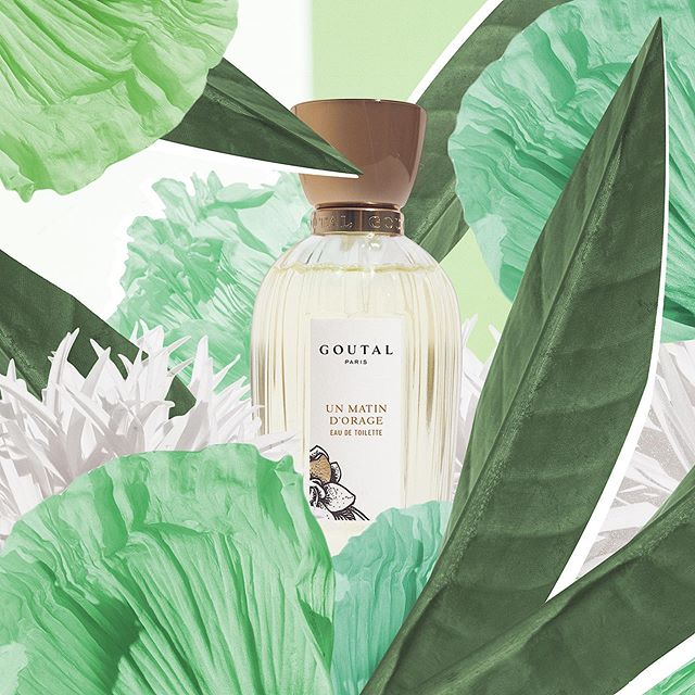 🌿Collage for @goutalparis . . . . . . #perfume #collage #graphicdesign #cosmetics #shooting #designer #graphics #decoration #artsy #graphic #artoftheday #designinspiration #photoshop #luxury #paris #france