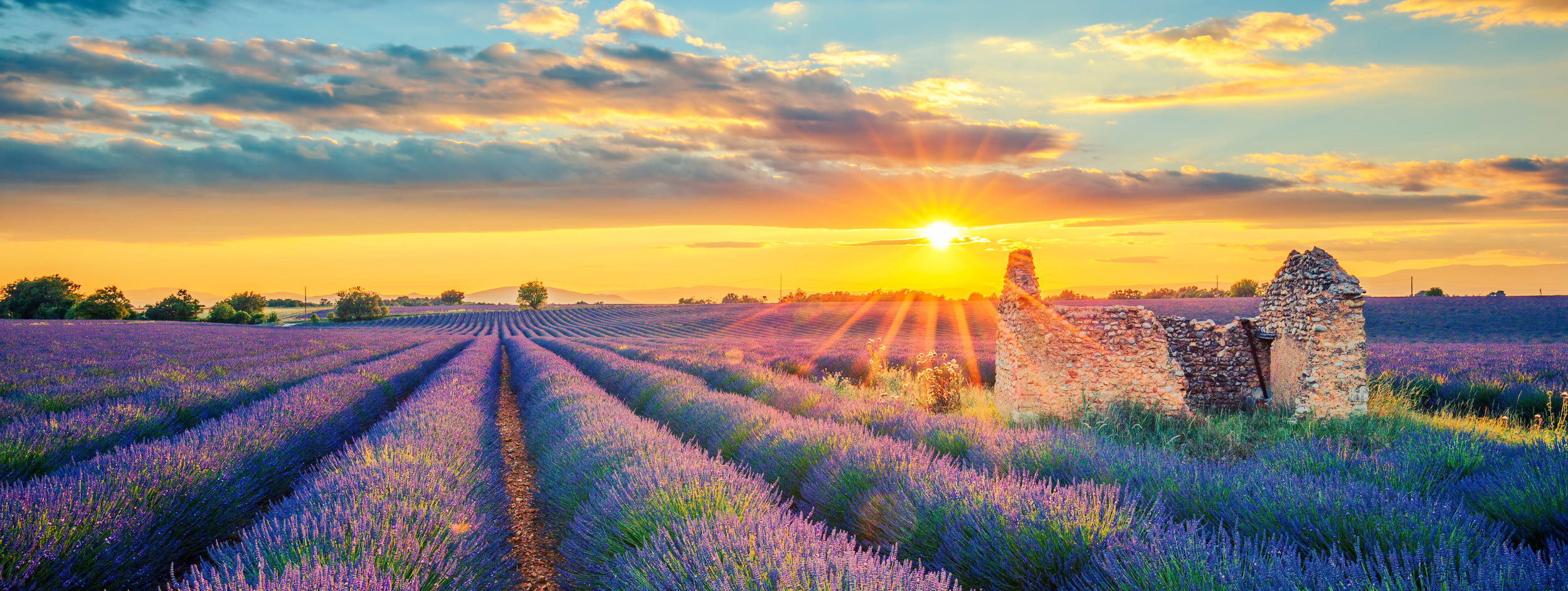 PROVENCE -