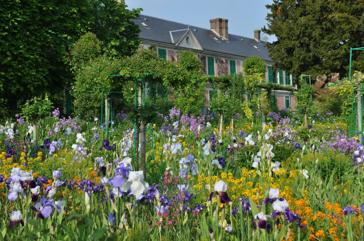 giverny-iris-time.jpg