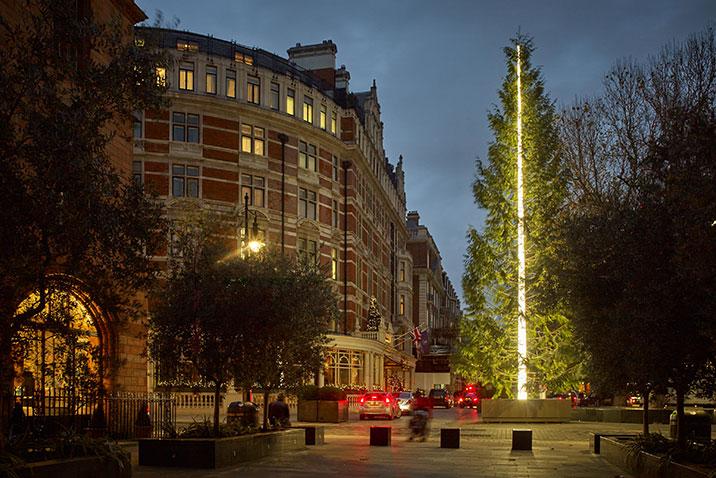 the-connaught-christmas-tree-by-antony-gormley.jpg