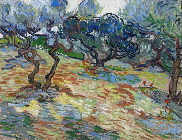 Olive Trees, Vincent van Gogh - 1889