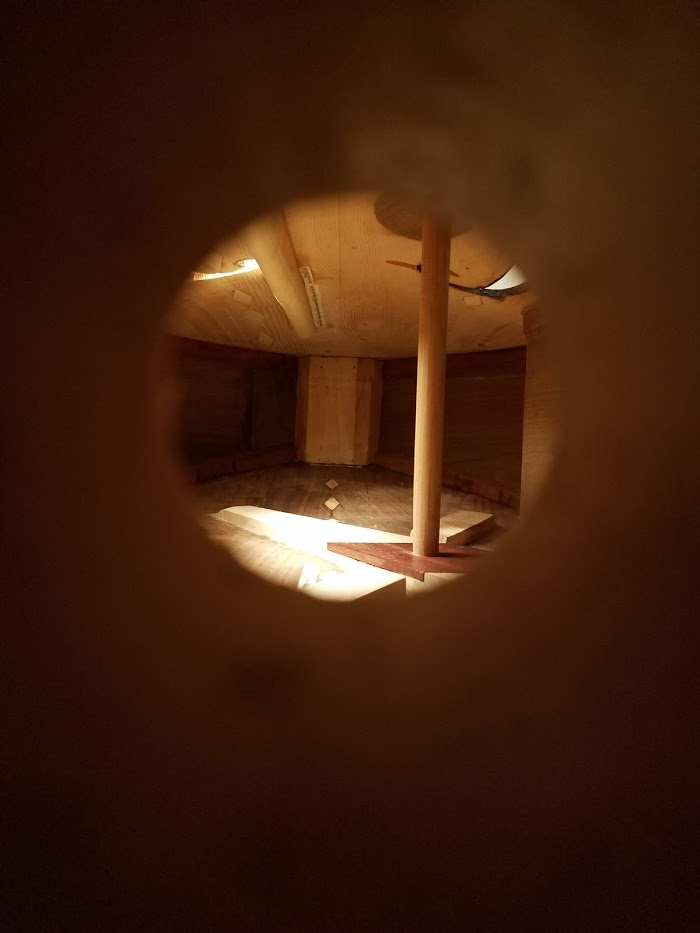 Inside view of a bass, checking soundpost.