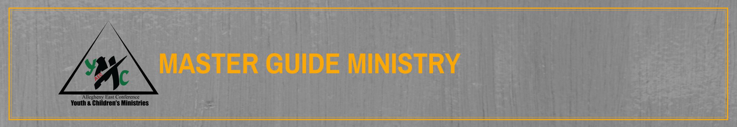 mstr guide header.png