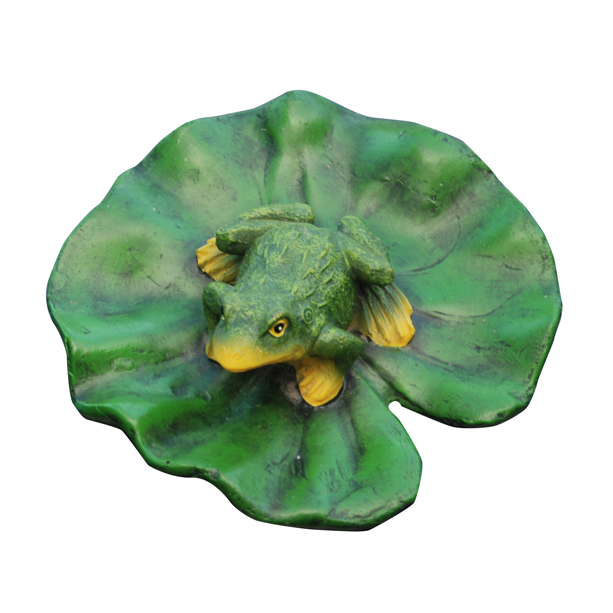 Floating Frog Lily