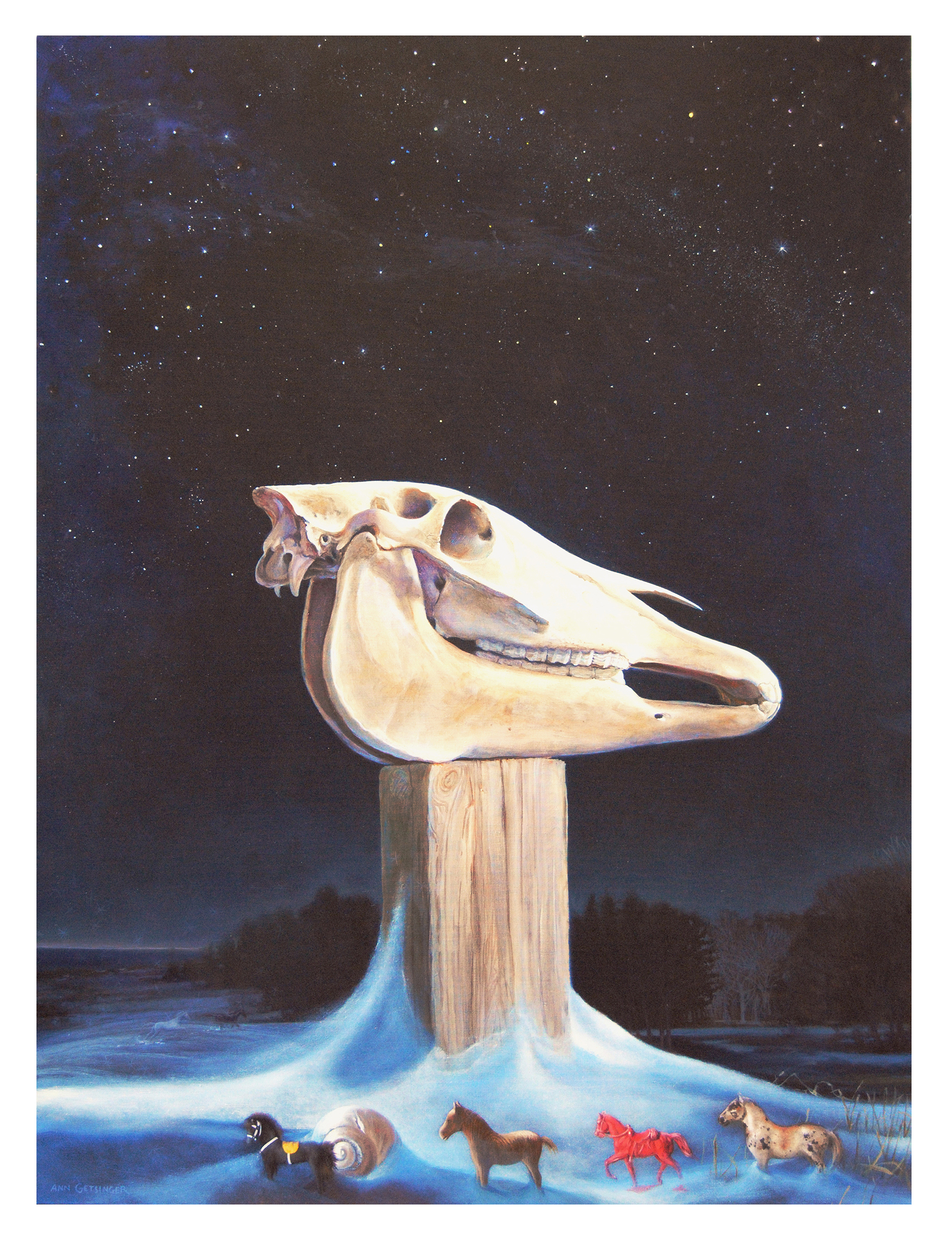 Equine Night.jpg