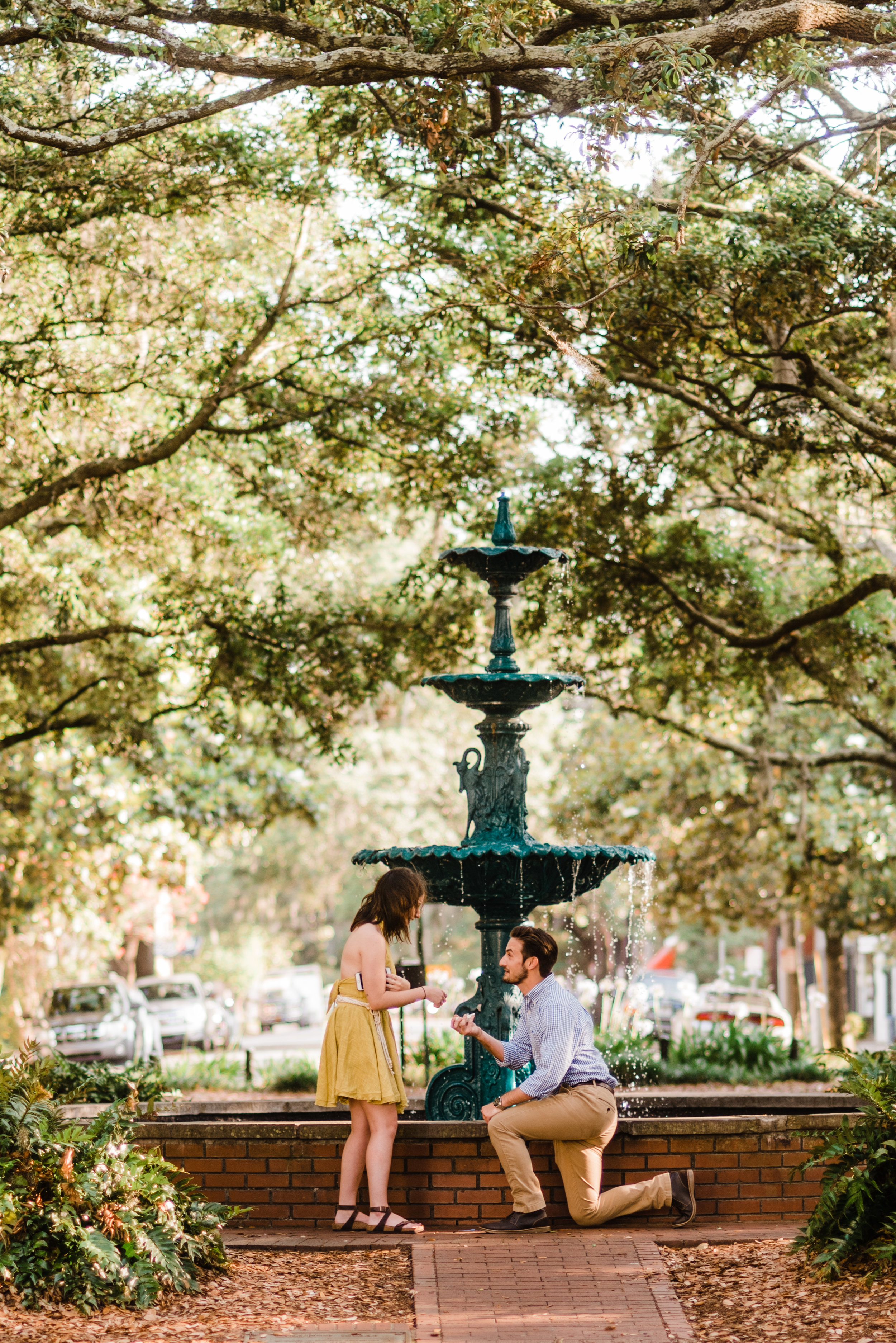SUPRISE PROPOSALS & COUPLES STARTING AT $350 -