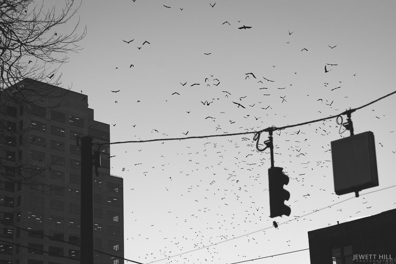 street-18.jpg