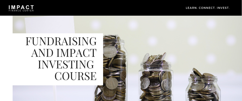 Fundraising and Impact Investing (1).png
