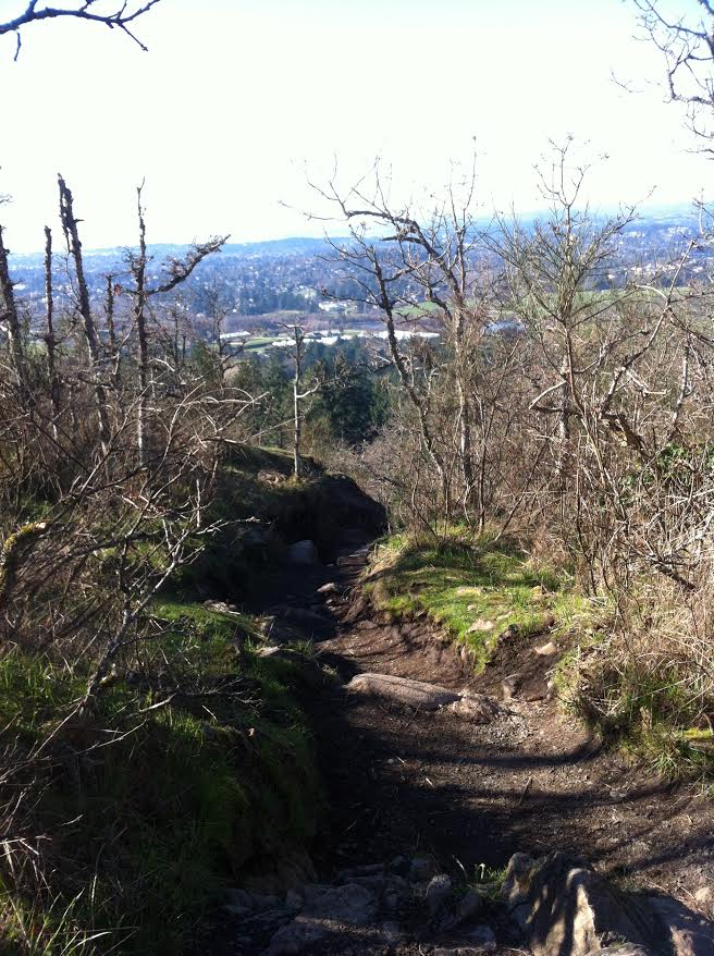 Mt. Doug Park Photo Credit:  Caron Somers