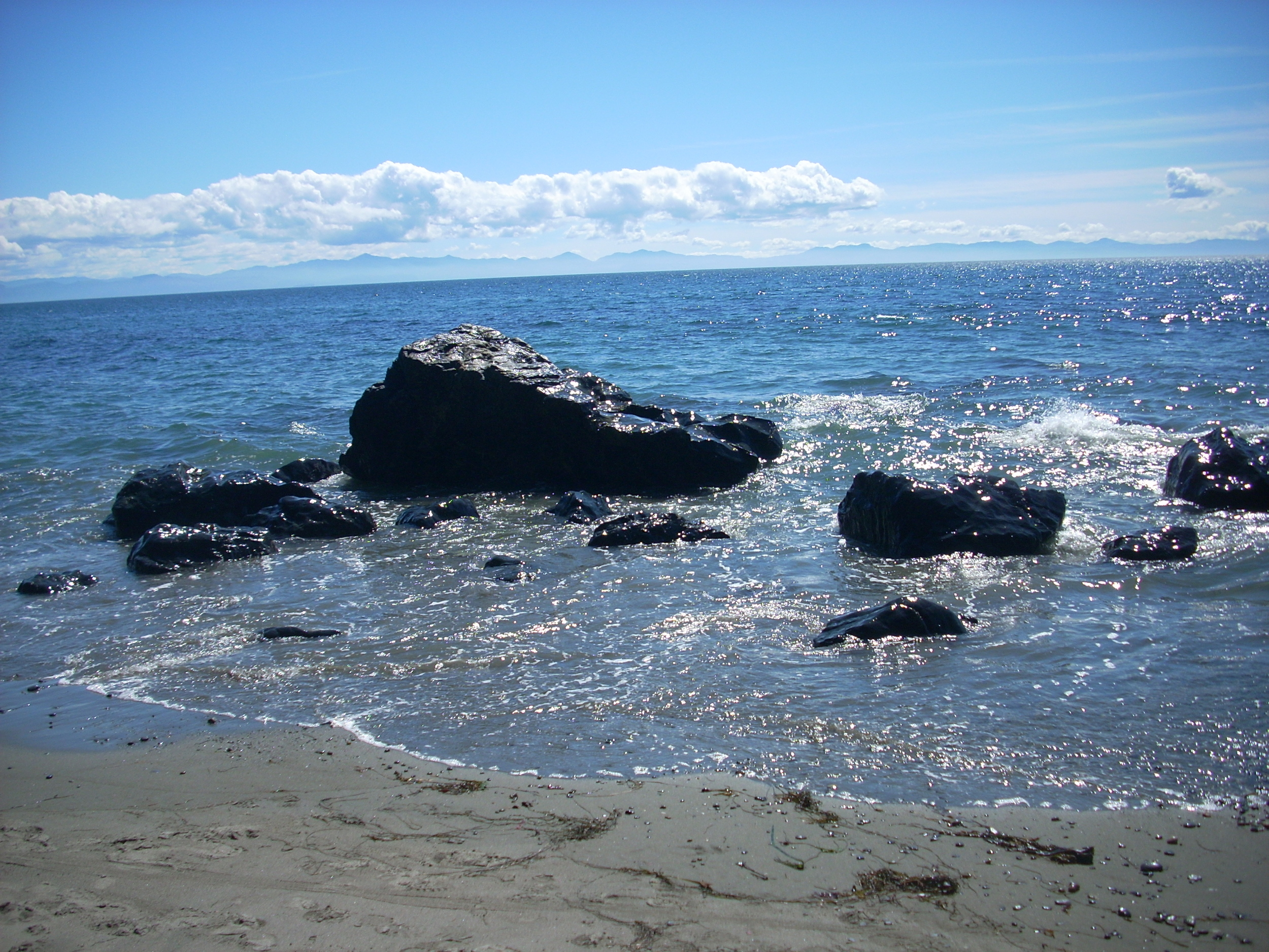 One of our beautiful beaches here on Vancouver Island Photo Credit: Michelle Somers