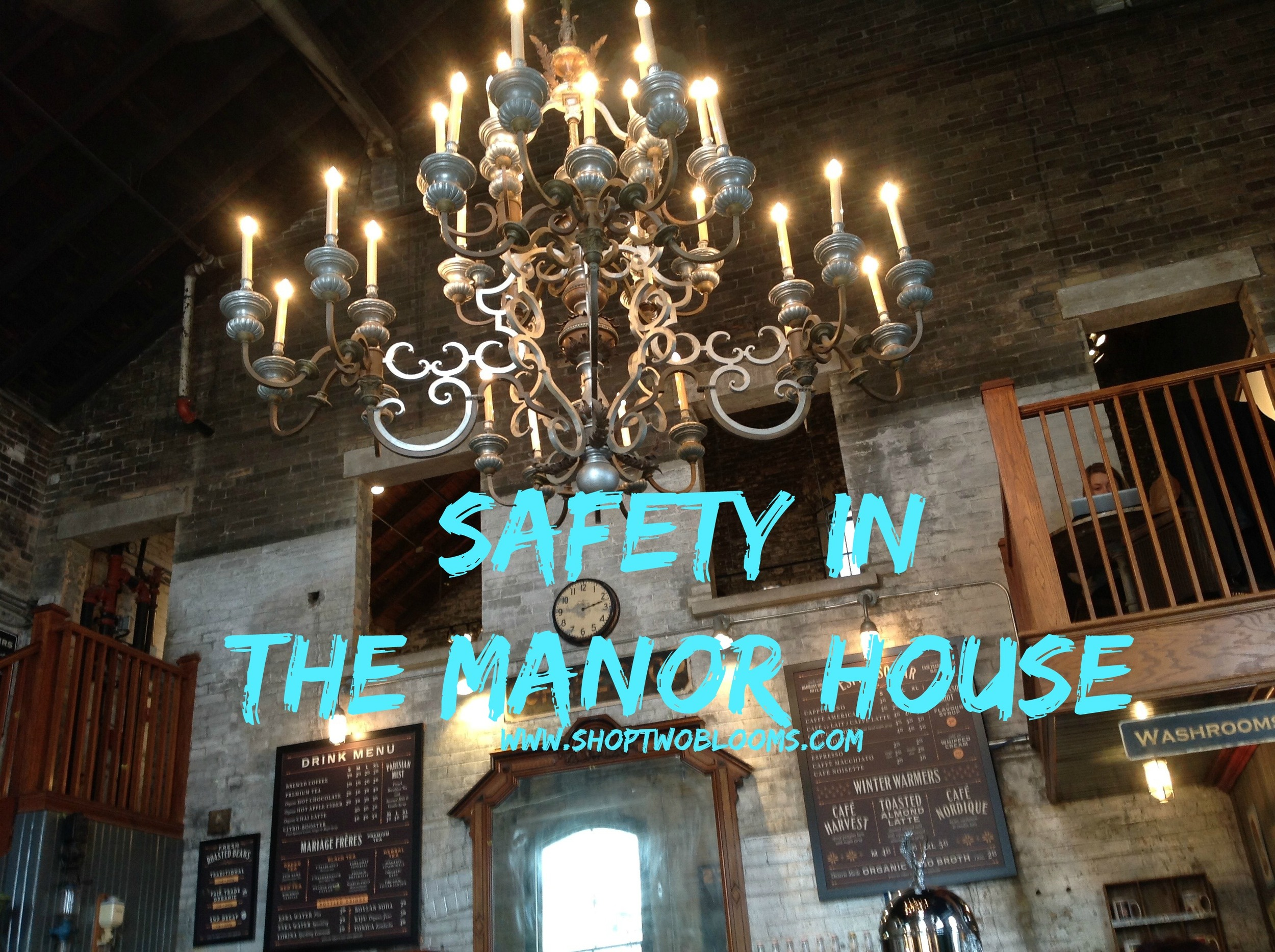 shoptwoblooms Safety in the manor house