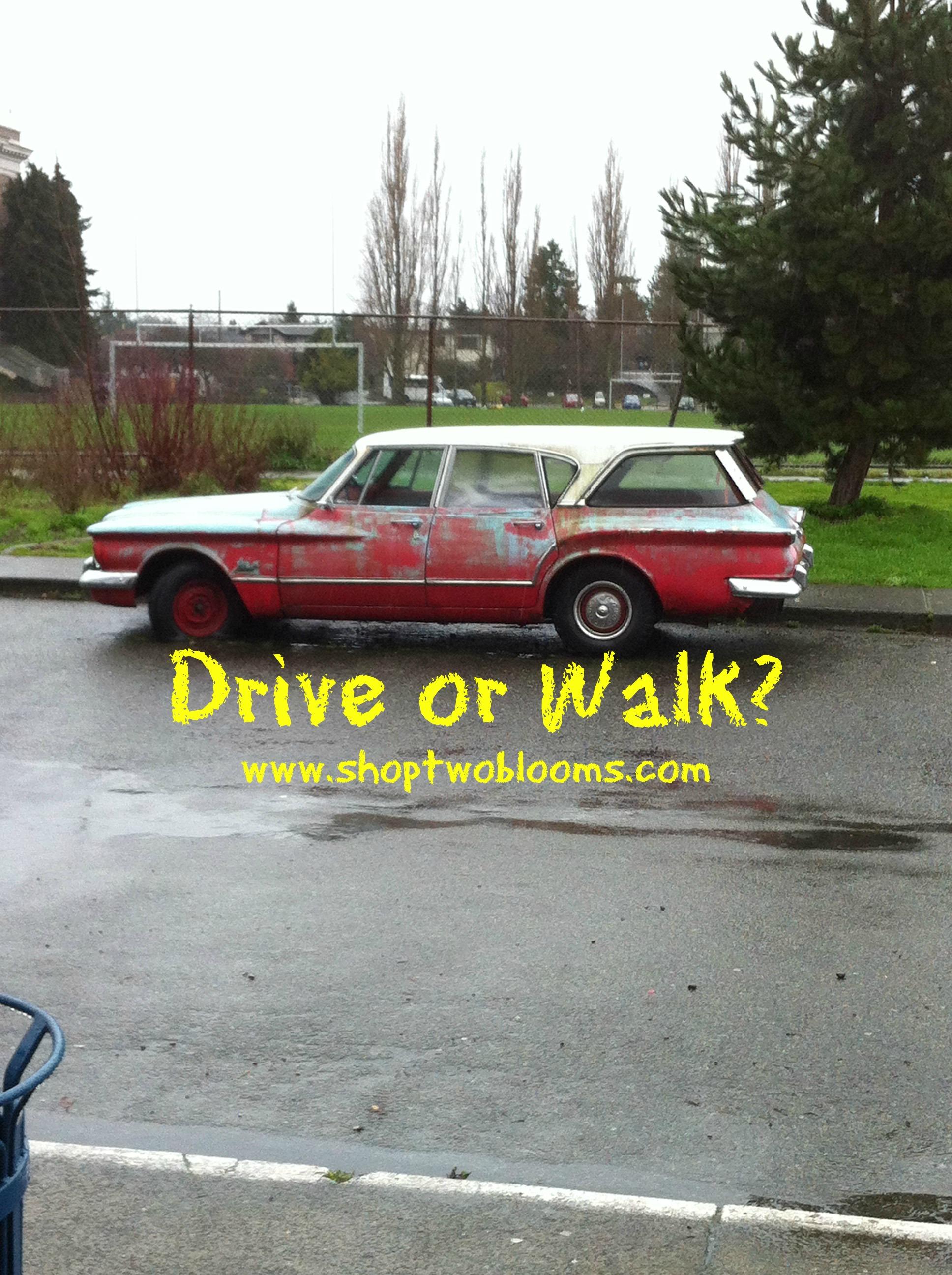 shoptwoblooms drive or walk.jpg