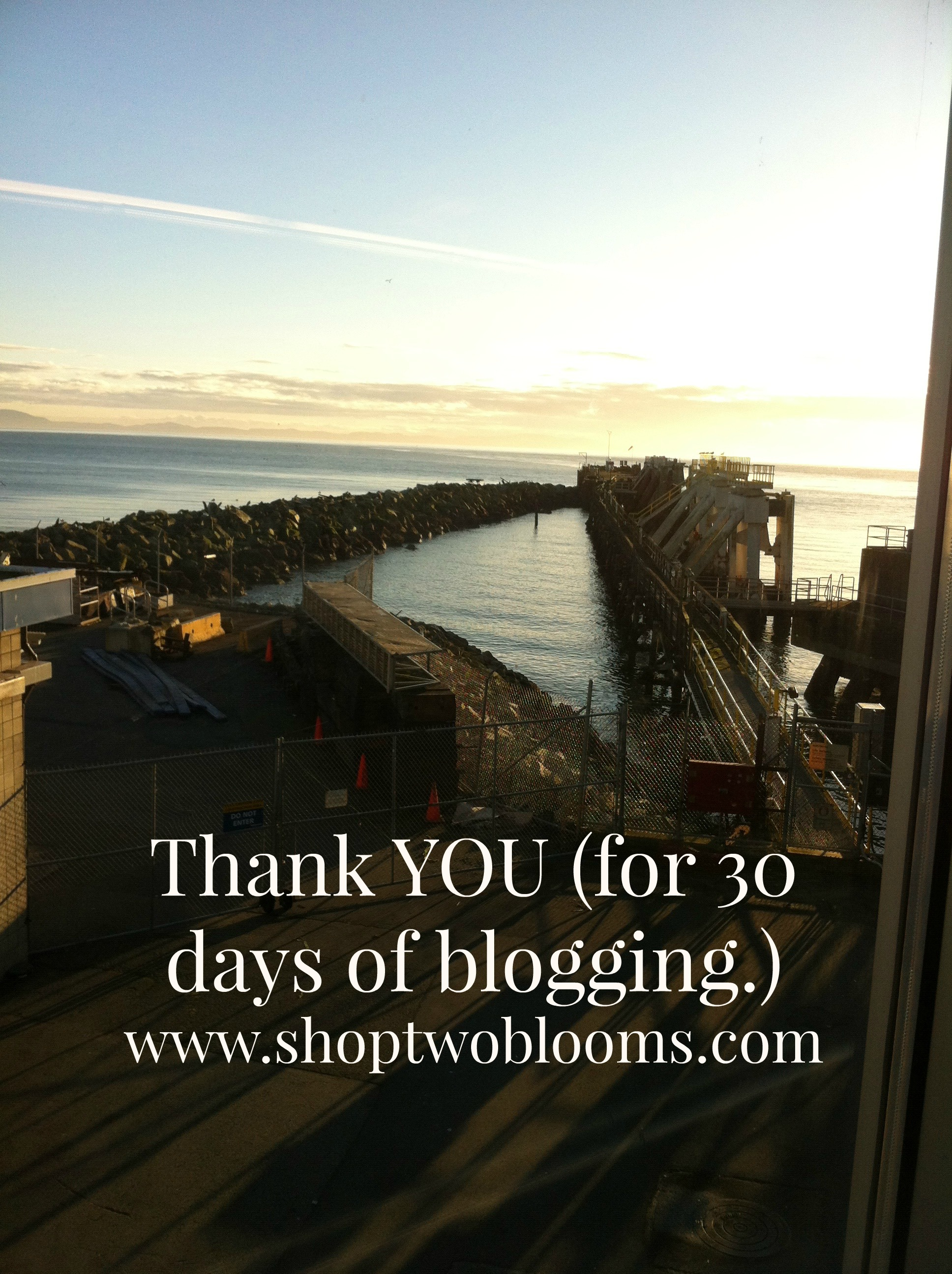 shoptwoblooms thank you.jpg