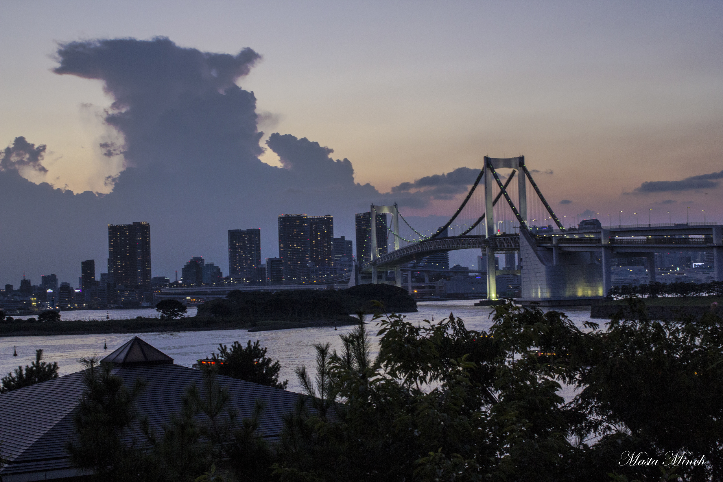 The evening view of Tokyo from Diver City.
