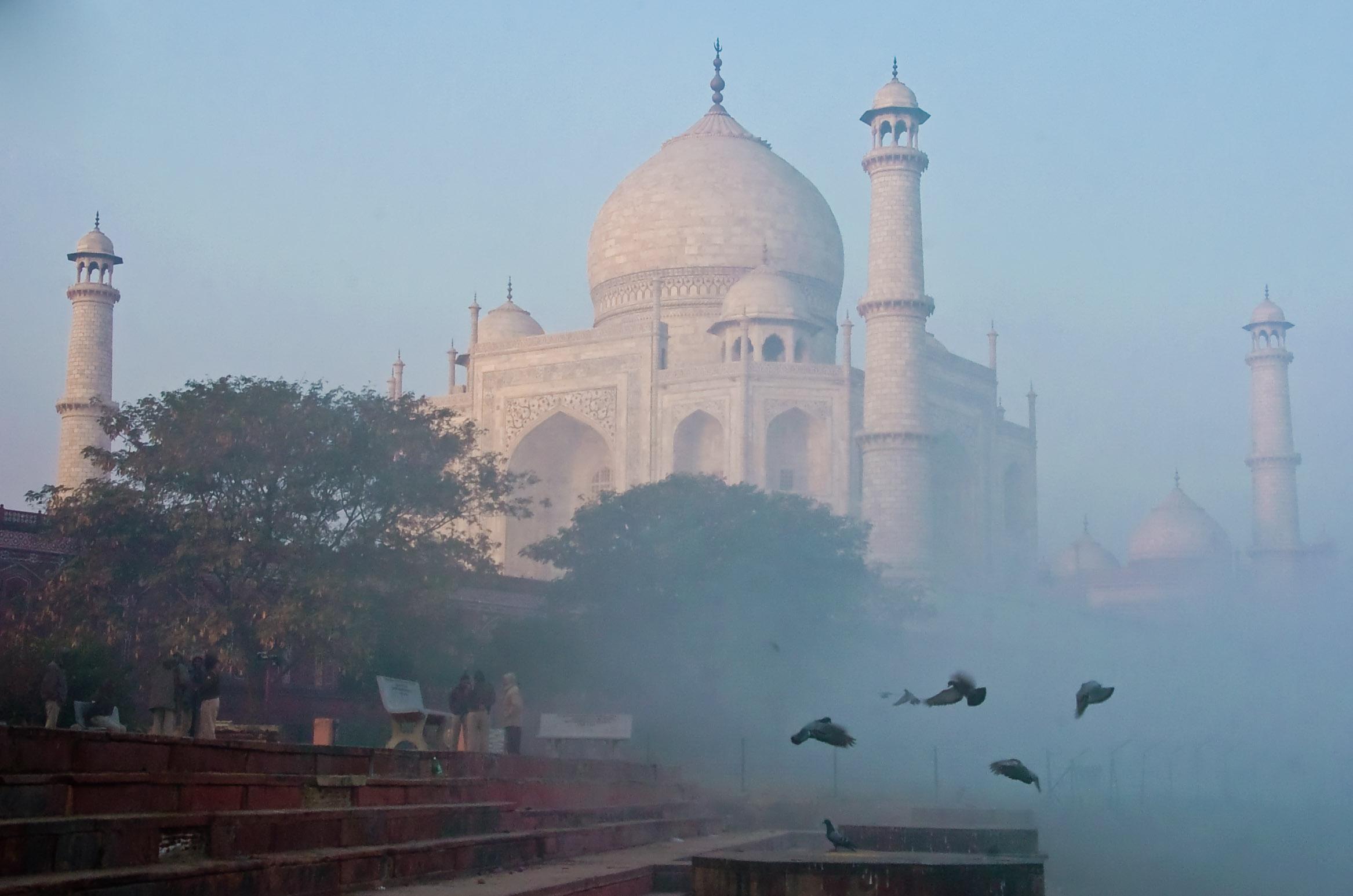 India-0231.jpg