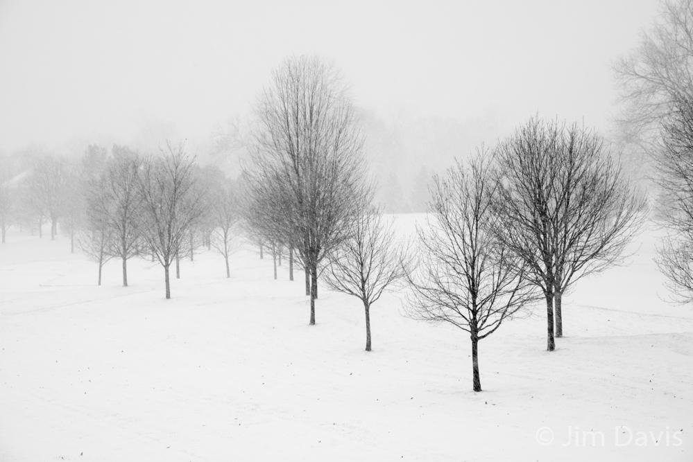 Landscape -6428