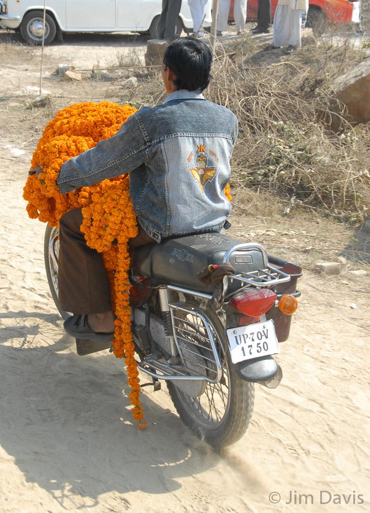 India -0346