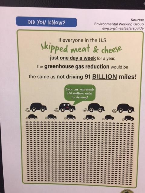 green trivia poster.JPG