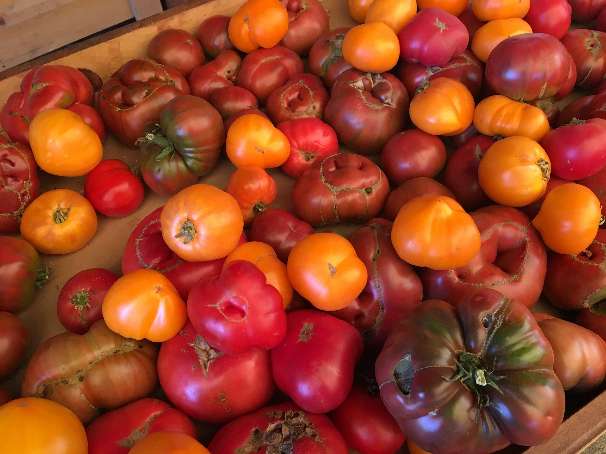 Look @ these heirloom tomatoes