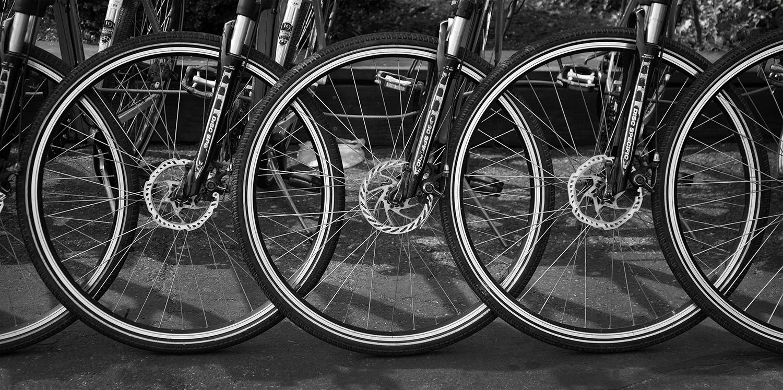 Bicycle wheels.jpg