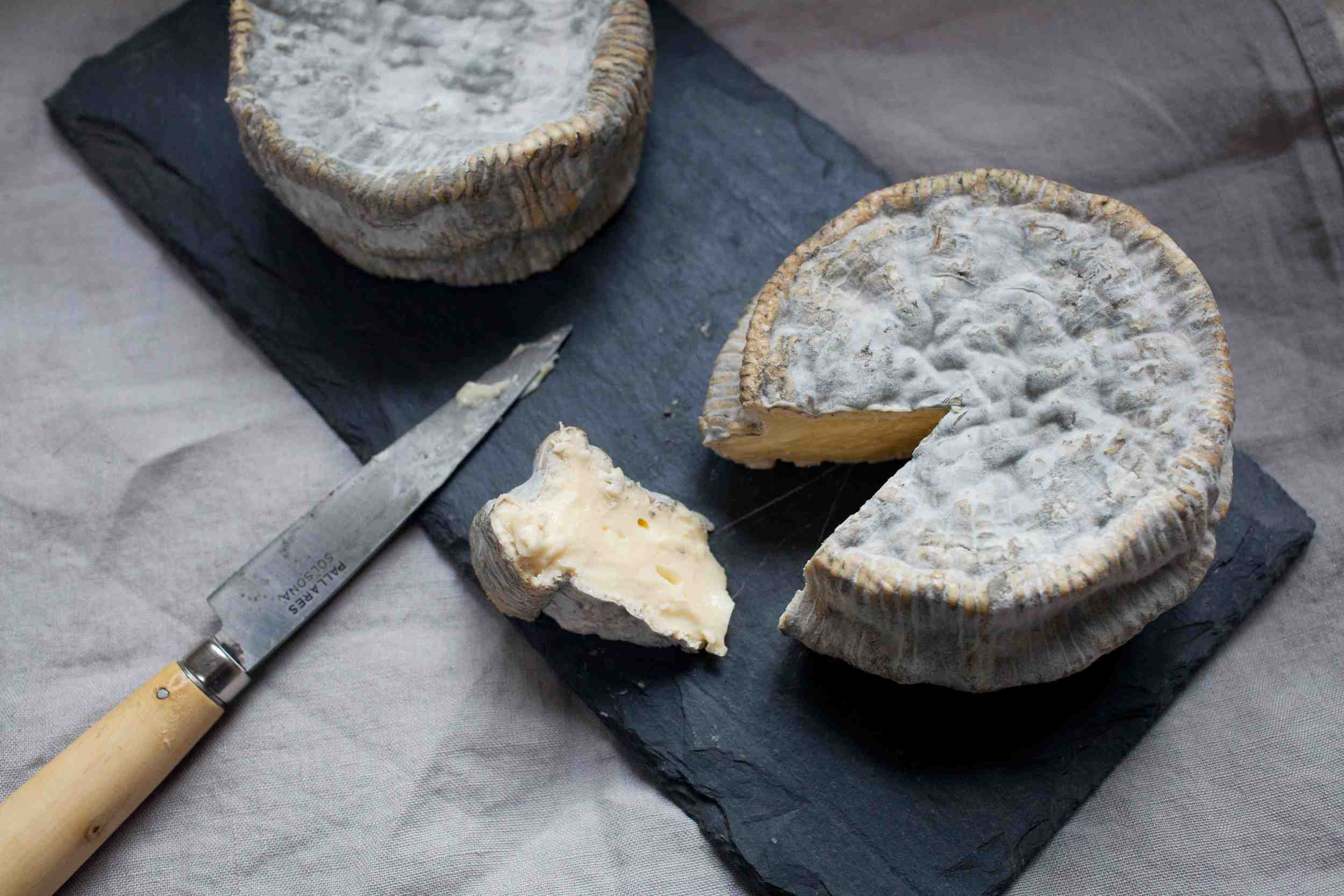 Surface Ripened Blue Cheese