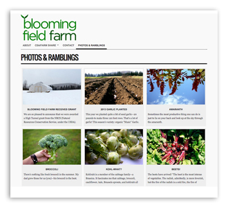 Blooming Field Farm, website and marketing materials