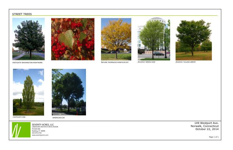 Slide1 JS.jpg