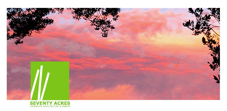 11+Pastel+Sky+With+Trees.jpg