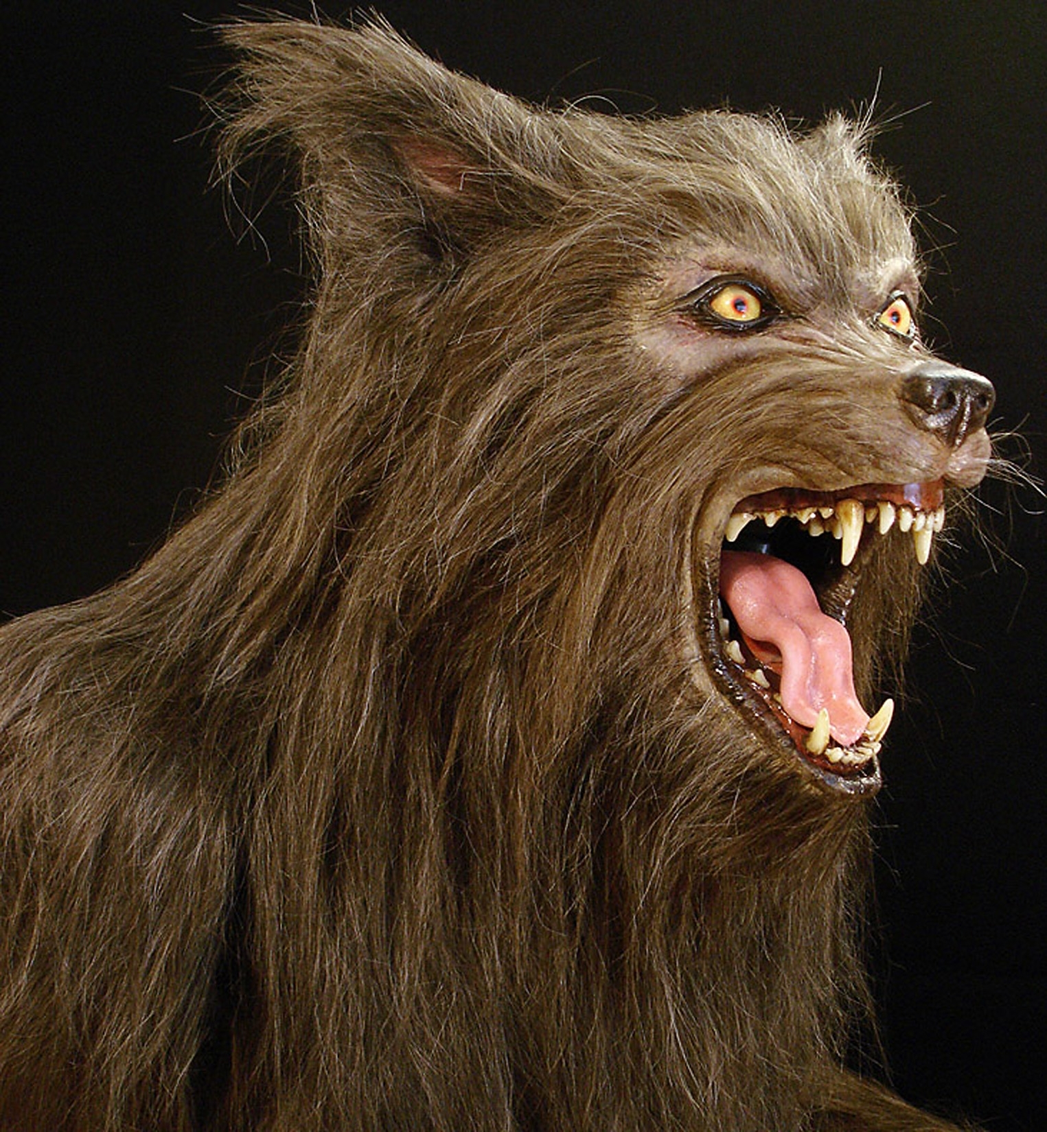 Brown wolf - Lifesized werewolf statue by Tom Spina Designs