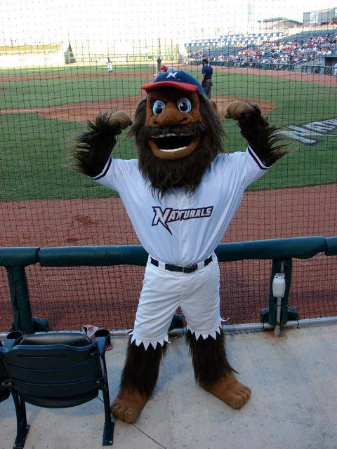 Strike for the Northern Arkansas Naturals by Street Characters