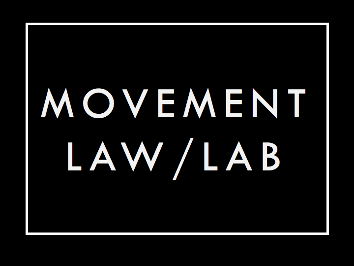 Movement Law Lab - Movement Law Lab is an innovation hub for movement lawyers that surfaces and accelerates legal experiments and innovations that democratize law and build the power of marginalized communities.