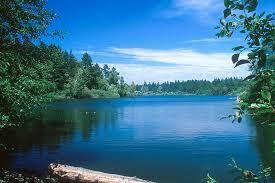 Barb: Lakeside