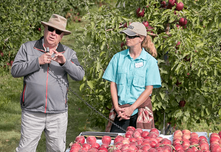 Lynnell Brandt, left, president of Proprietary Variety Management, discusses licensing and grade standards of Cosmic Crisp apples during a field day in September in Quincy, Washington. At right is Ines Hanrahan, project manager for the Washington State Tree Fruit Research Commission.