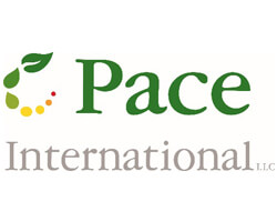 CC-Web-Pace_International-Logo.jpg
