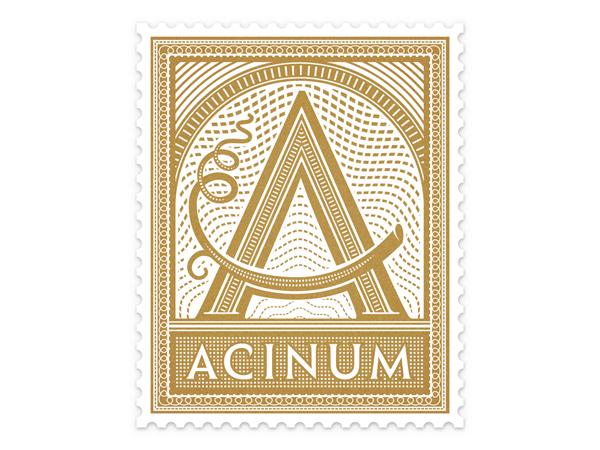 Acinum_Thumbnail_01.jpg