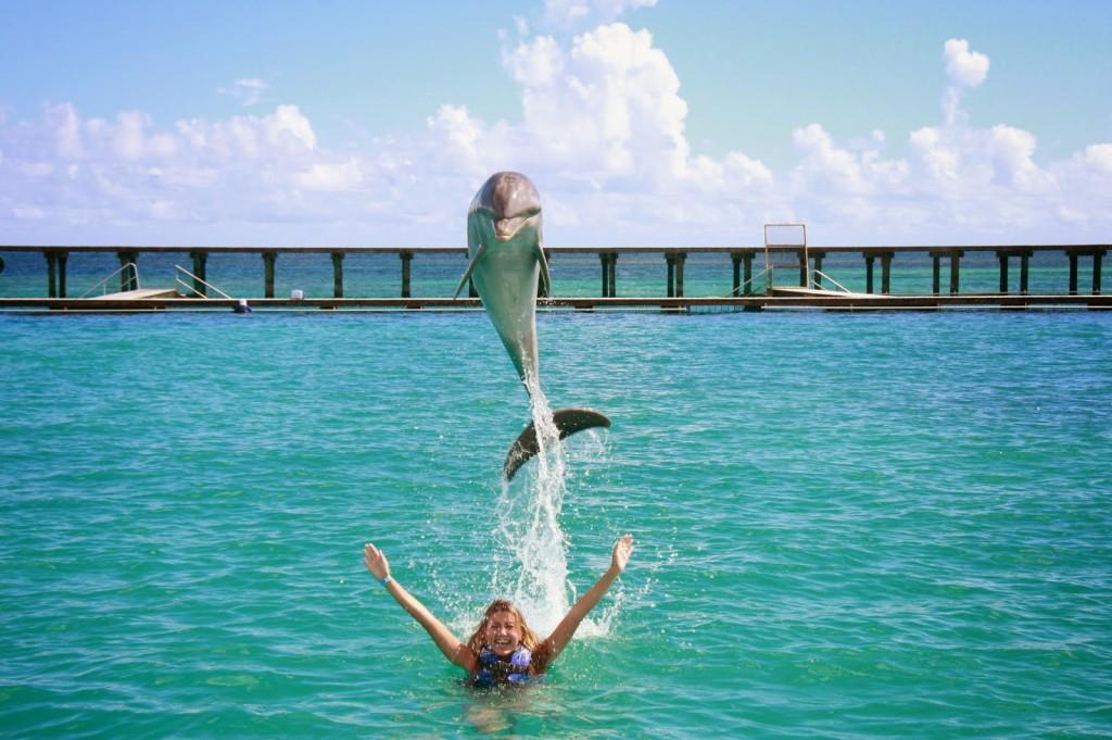 17-DOLPHIN-EXPLORER-intera----o-e-nado-com-golfinhos-punta-cana-dicas-de-viagem-republica-dominicana-caribe-bavaro-1024x681.jpg