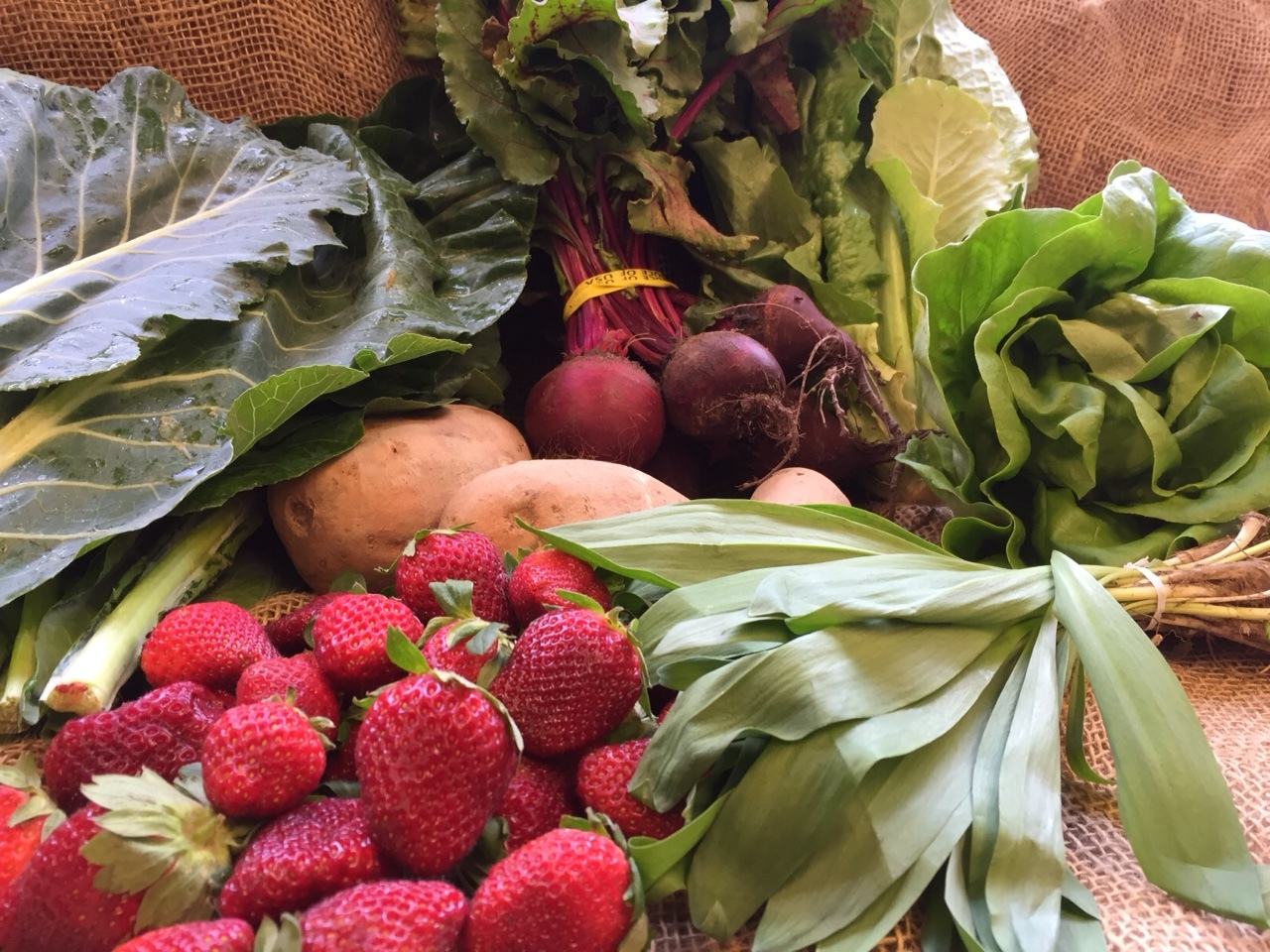 Hydroponic lettuce, ramps, strawberries, collard green, romaine, beets, cremini mushroom, white sweet potato
