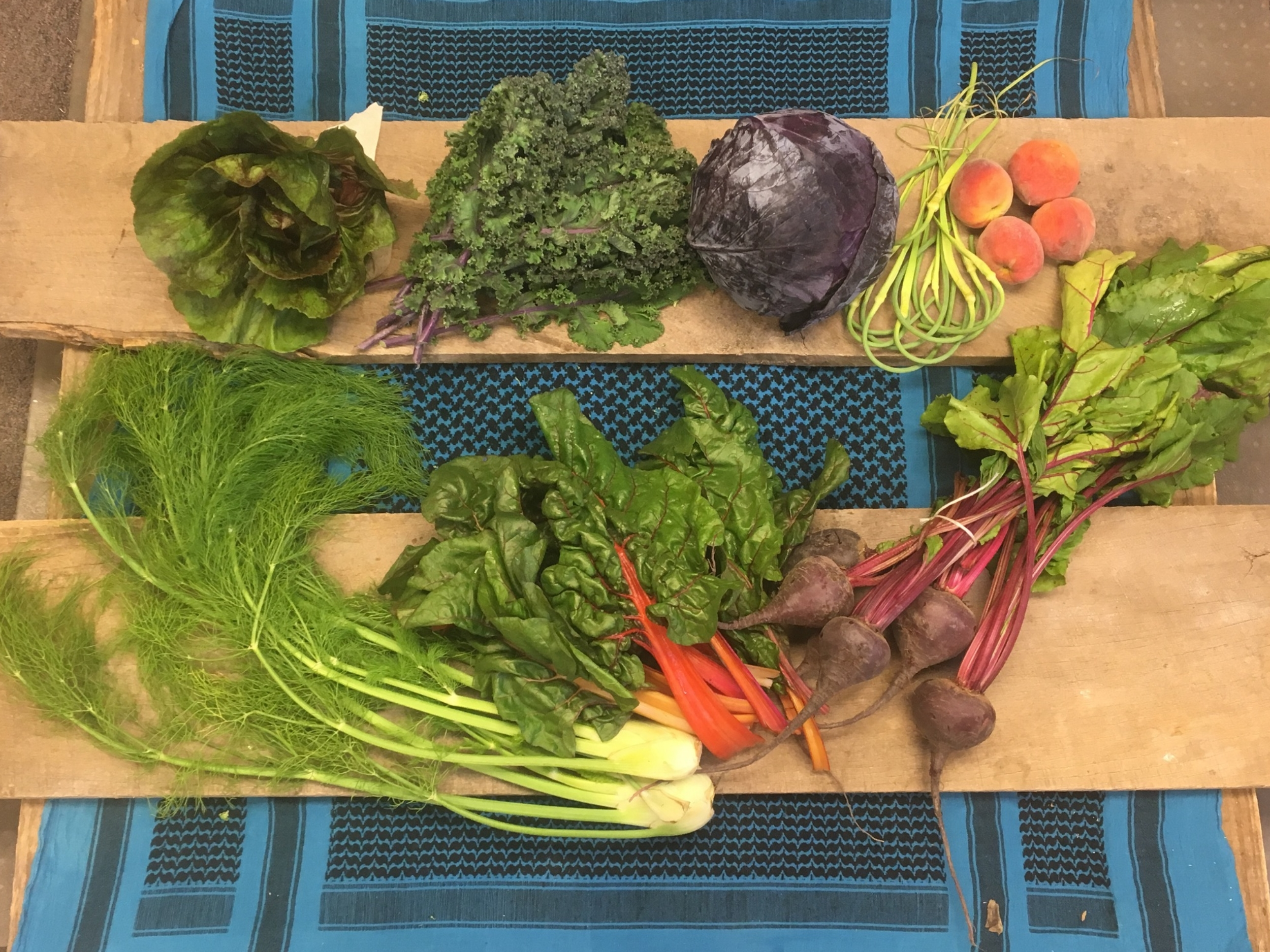 Spice of Life Small~ Lettuce, Kale, red cabbage, garlic scapes, peaches, fennel, swiss chard, beets.