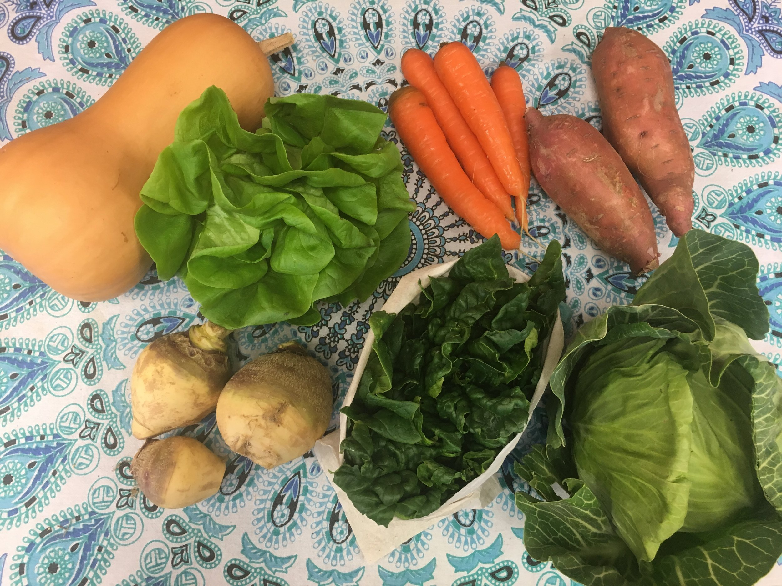 Southern Comfort small- butternut squash, Bibb lettuce, carrots, garnet sweet potatoes, rutabaga, spinach, and green cabbage.
