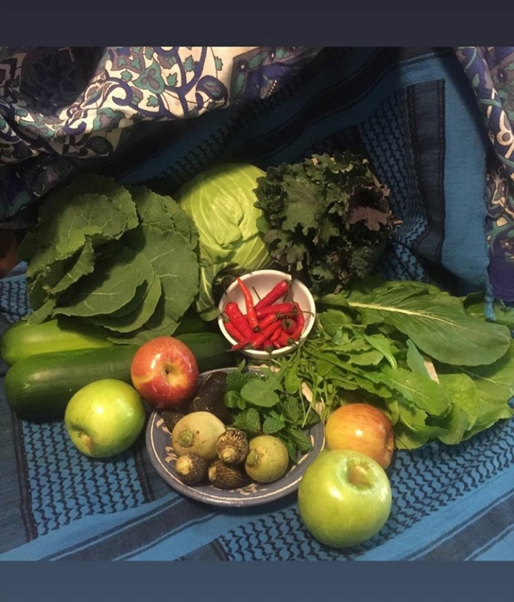 We hope you have room after the holiday! The Mixed Greens this week are Mustards, Collards, and Rutabaga Greens. We have Zucchini, Cabbage, Kale, Cayenne, Apples, Radishes, and Mint (we suggest a good cup of hot tea)! Enjoy!