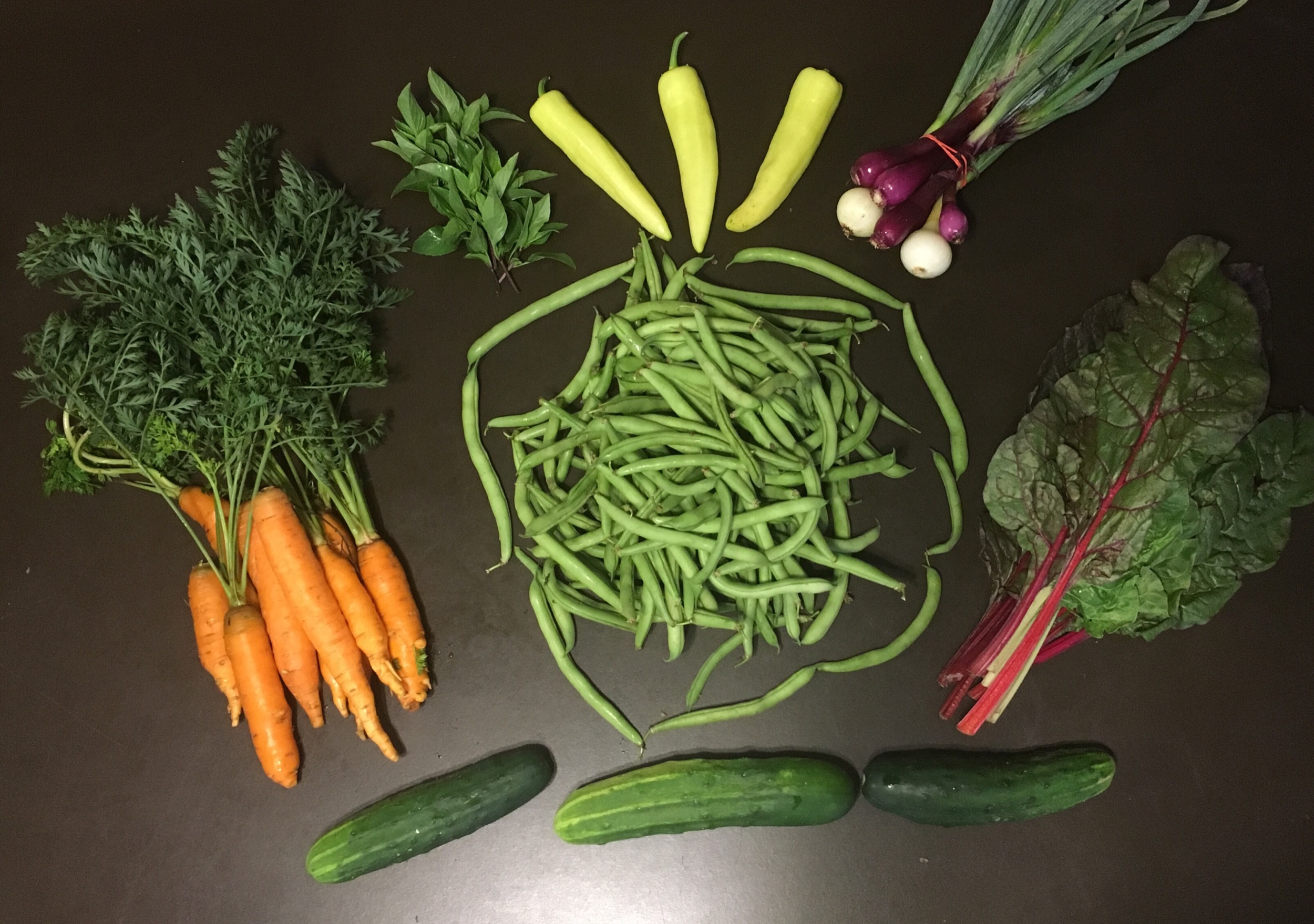 Carrots, slicing cucumbers, green beans, thai basil, banana peppers, sPring onions, swiss chard