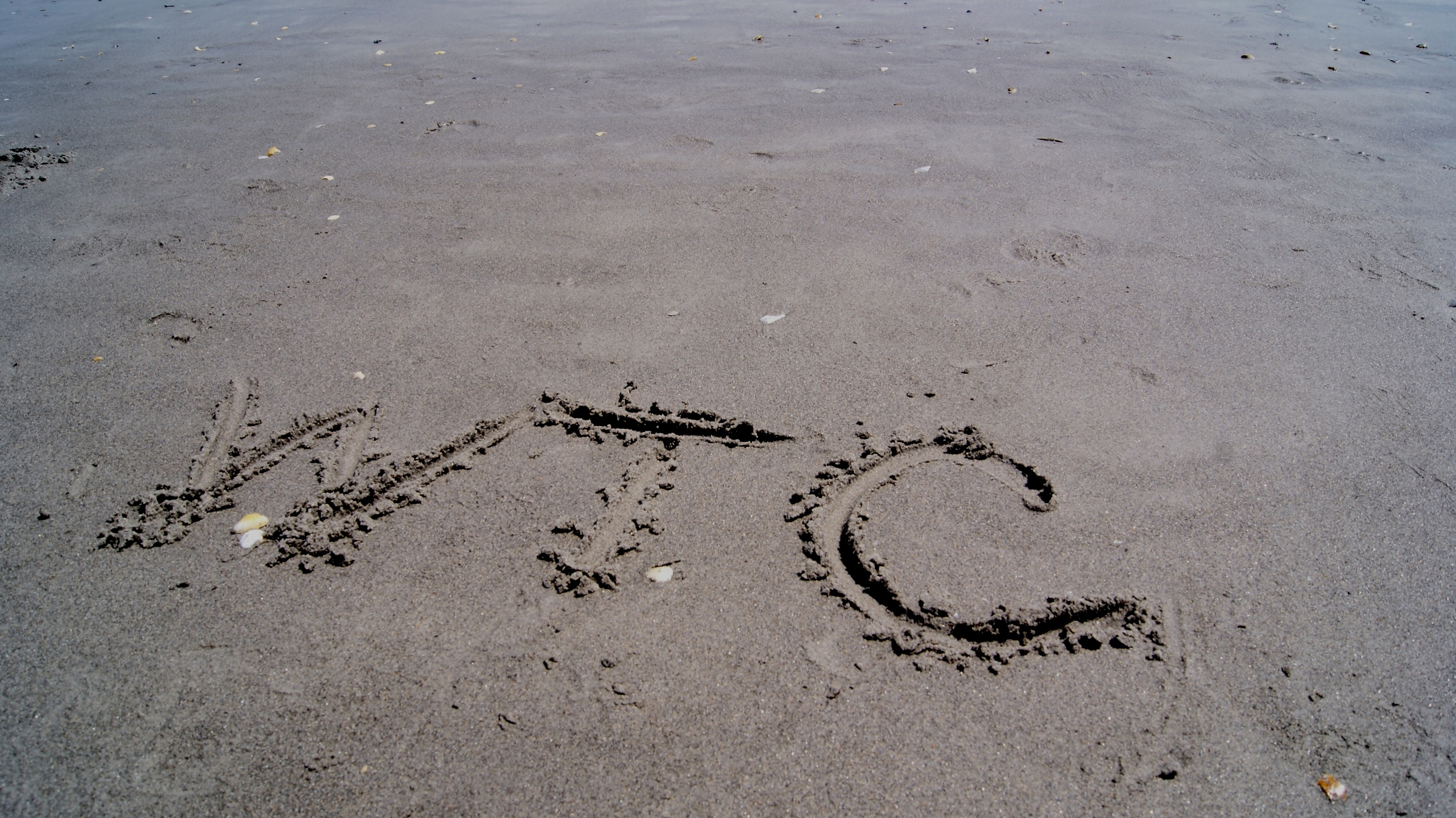 sandy beach initials