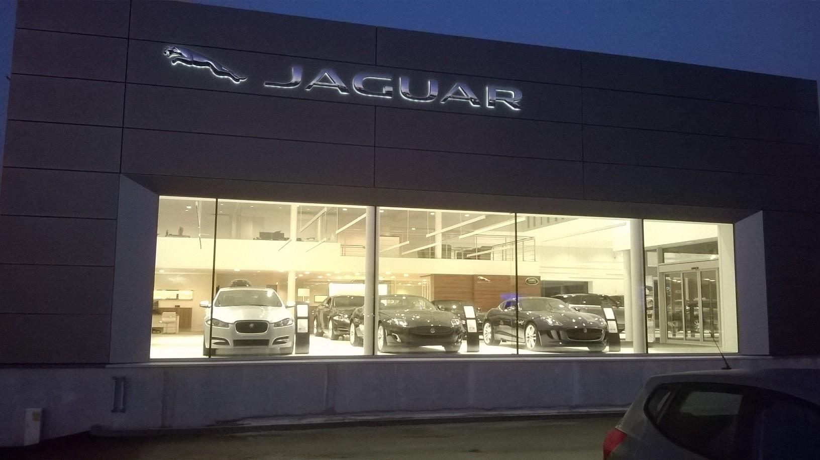 Jaguar - WP_20150107_003.jpg