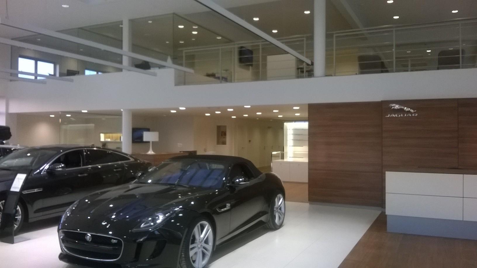 Jaguar - WP_20150107_006.jpg