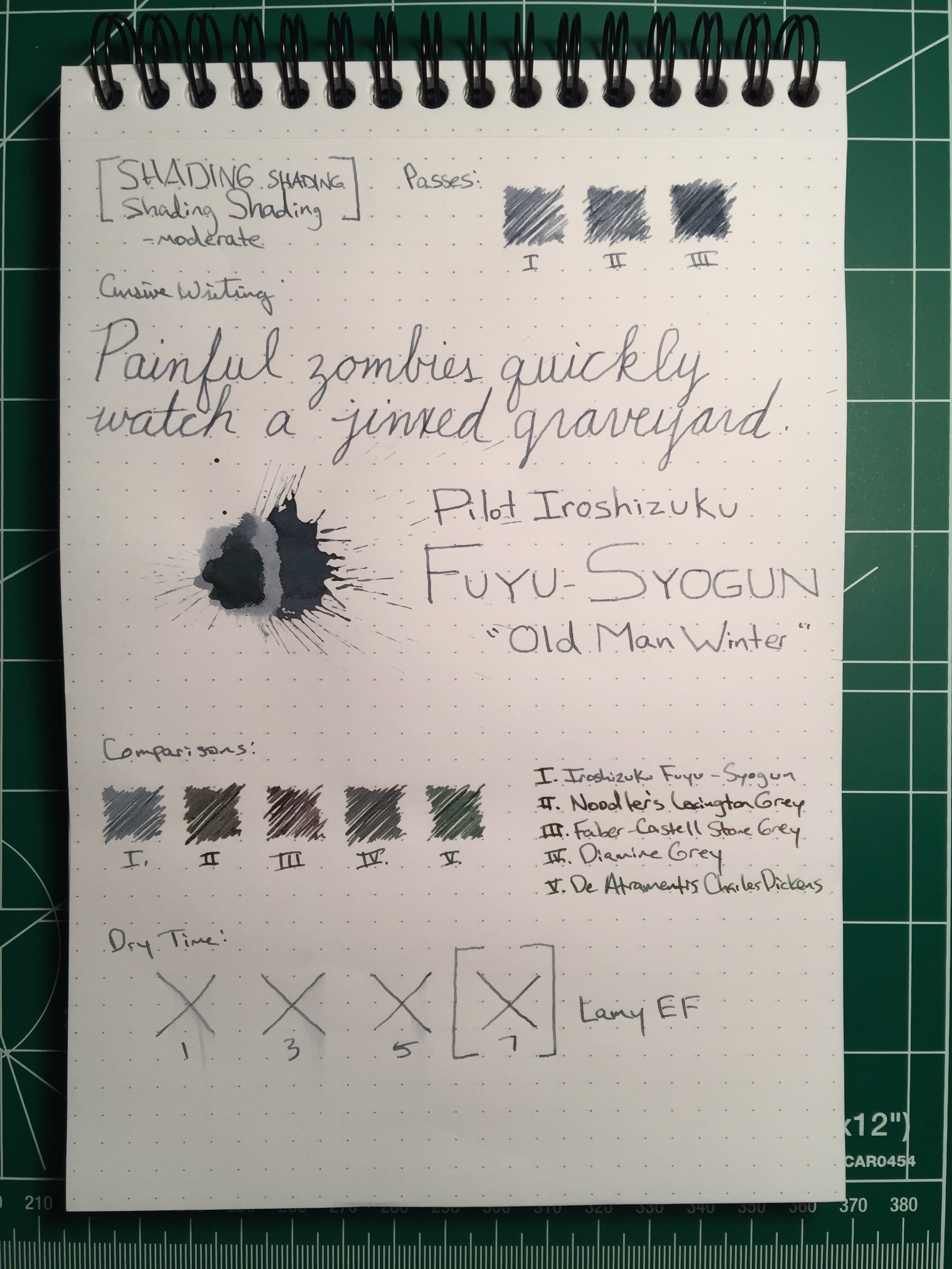 fuyusyogun-review
