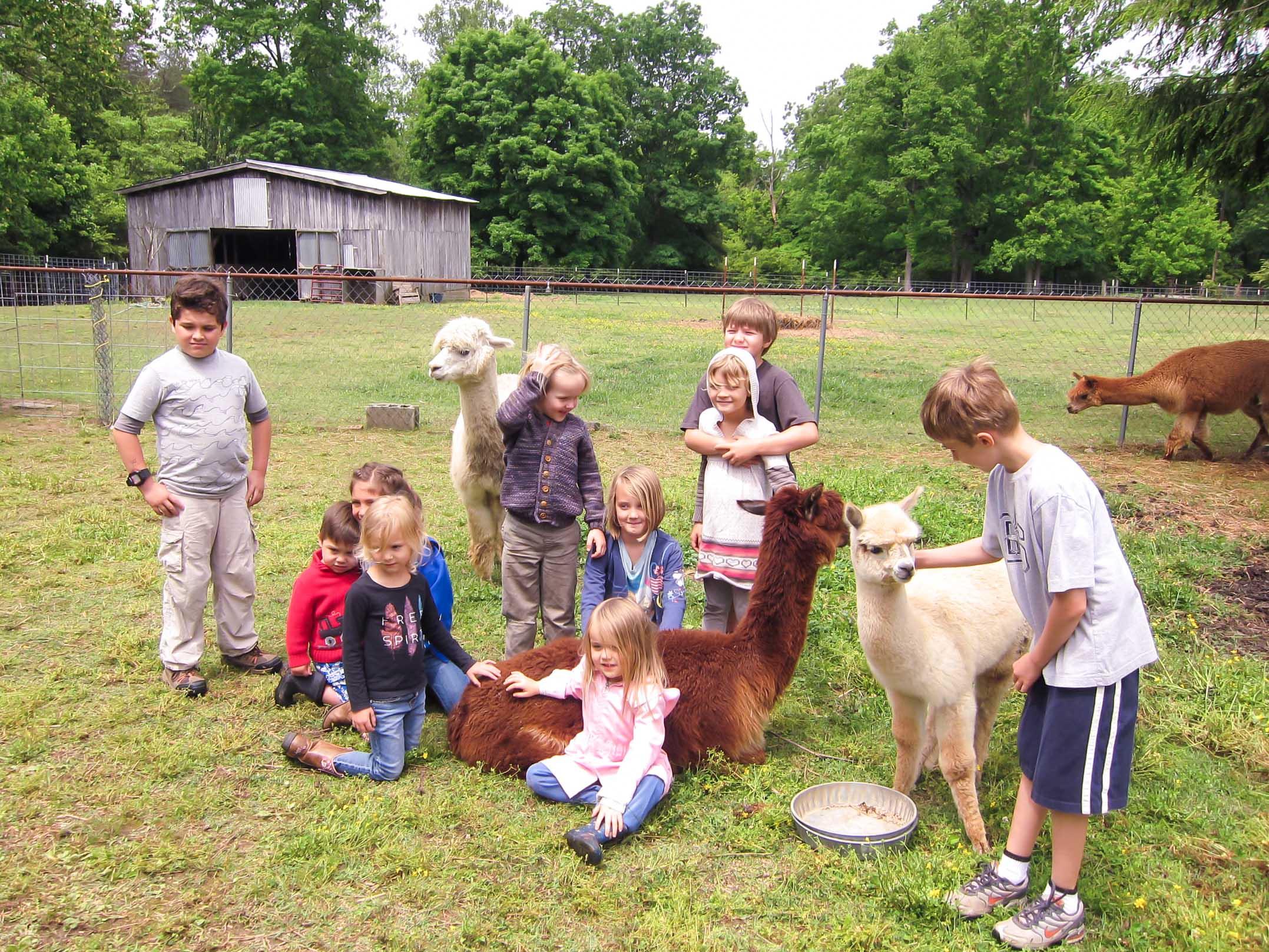 Waldorf Homeschool friends from Nashville