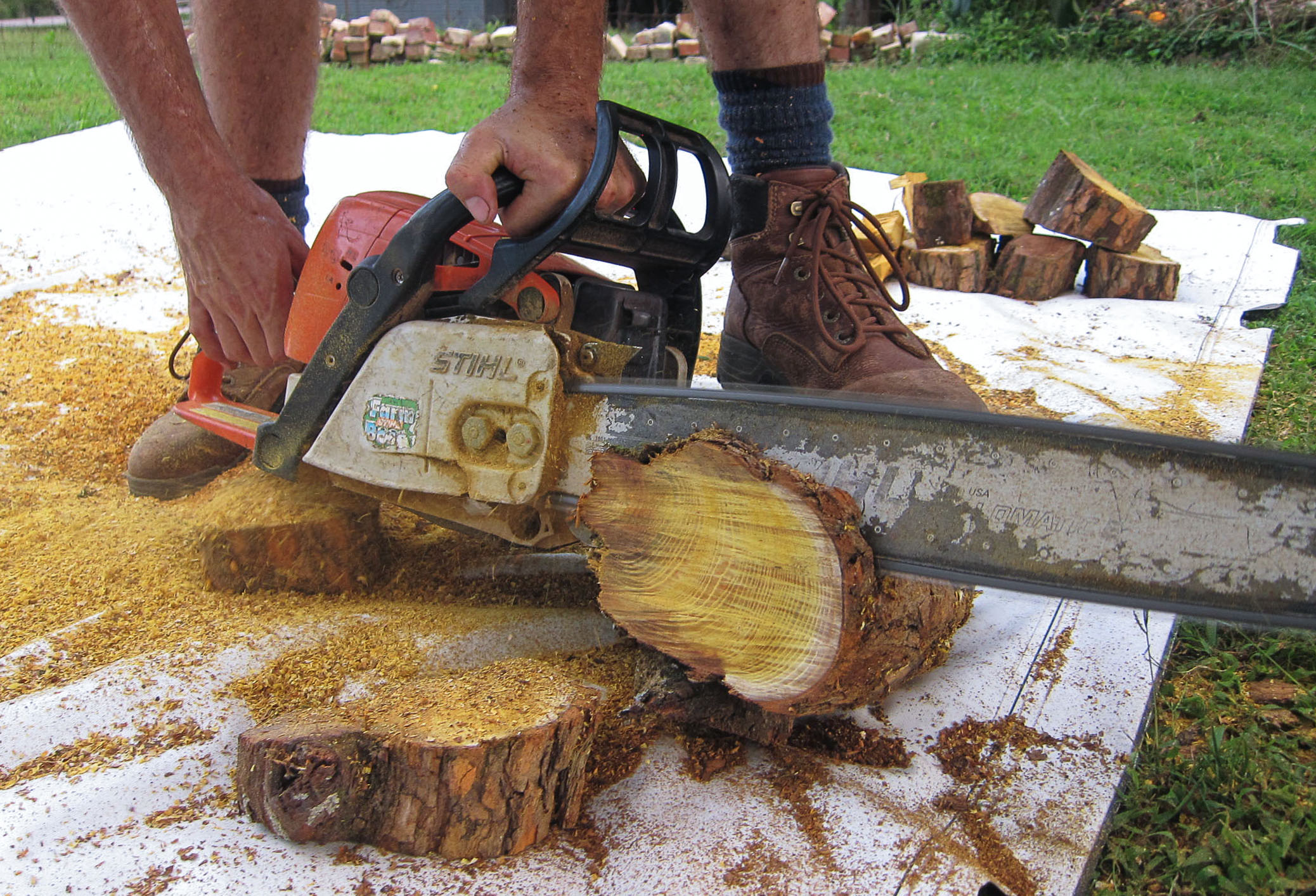 Osage Wood harvested, delivered, and cut by the best looking lumberjack I know over at  Tennessee Valley Firewood Co.