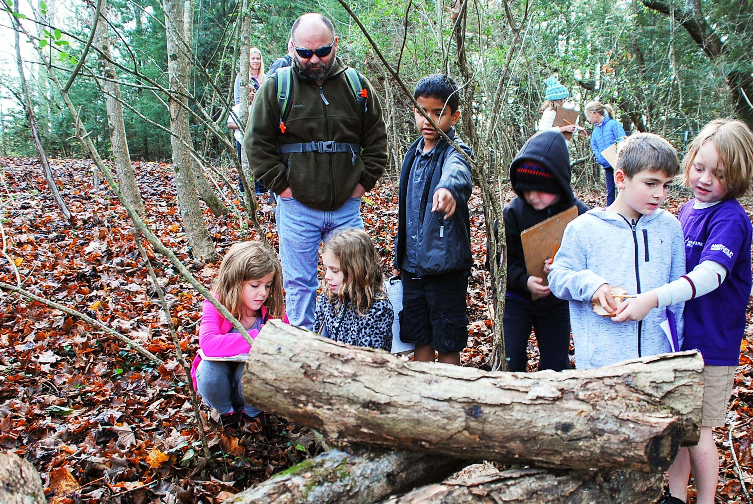 Inspecting the Shiitake Logs 11.17