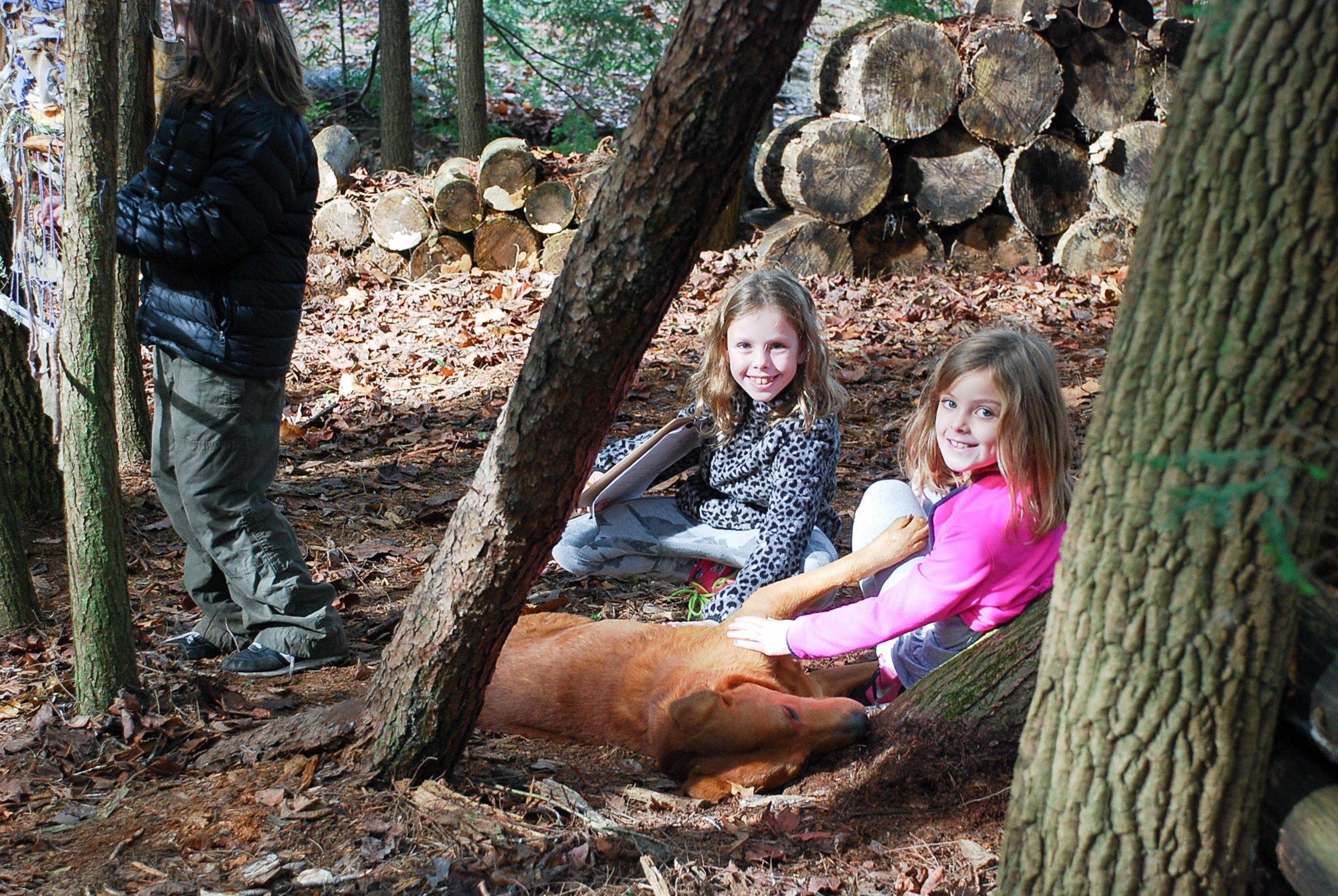 Normal Park Woodland Weaving + Hike 11.17